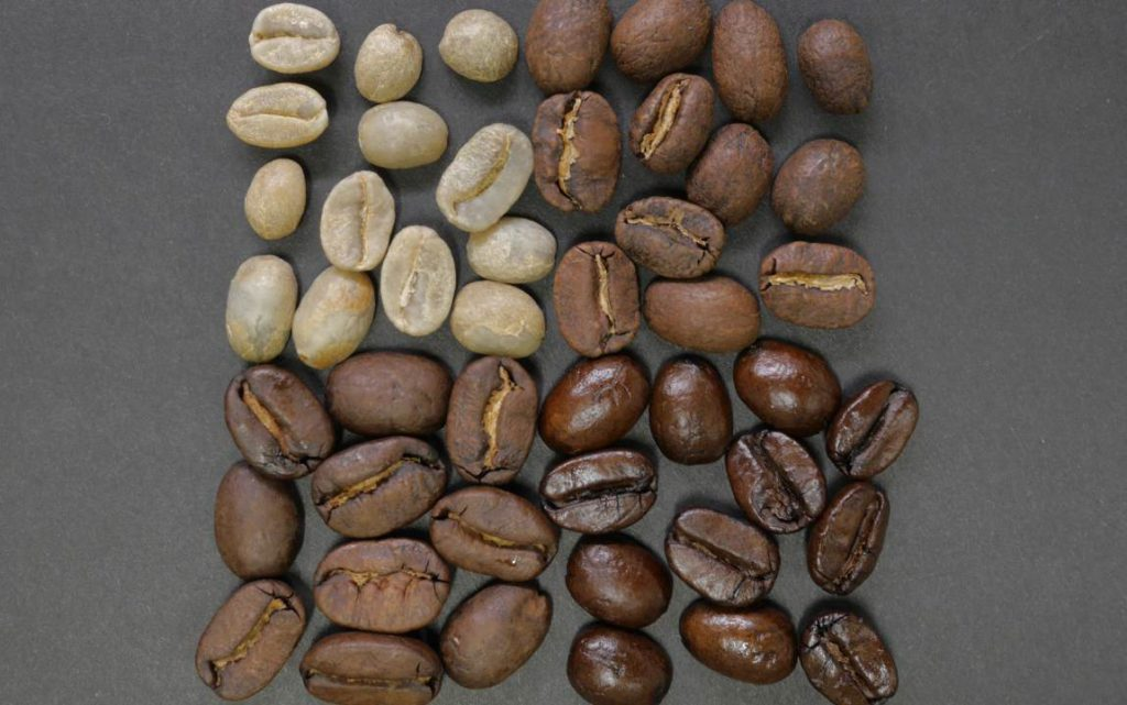 coffee bean profiles