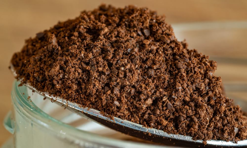 Circular economy: How can used coffee grounds be reused?